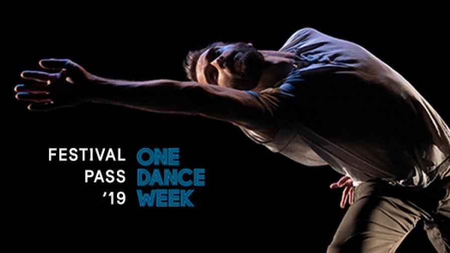 <p>Всички спектакли от <strong>едномесечното танцово чудо,</strong> което ще се вихри на българска сцена</p>
