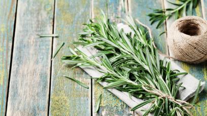 Растенията, които ще ви помогнат да се отървете от комарите