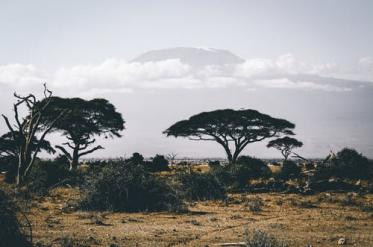 Най-смъртоносните в Африка