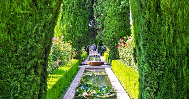 Любопитно Приказно красиви градини, които ще спрат дъха ви Намират