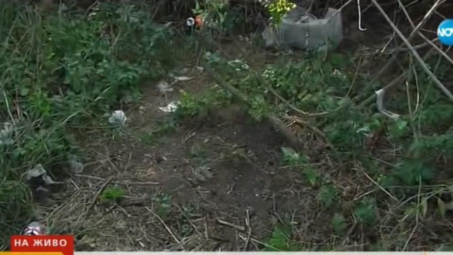 Откриха десетки епруветки с кръв, изхвърлени край Девня