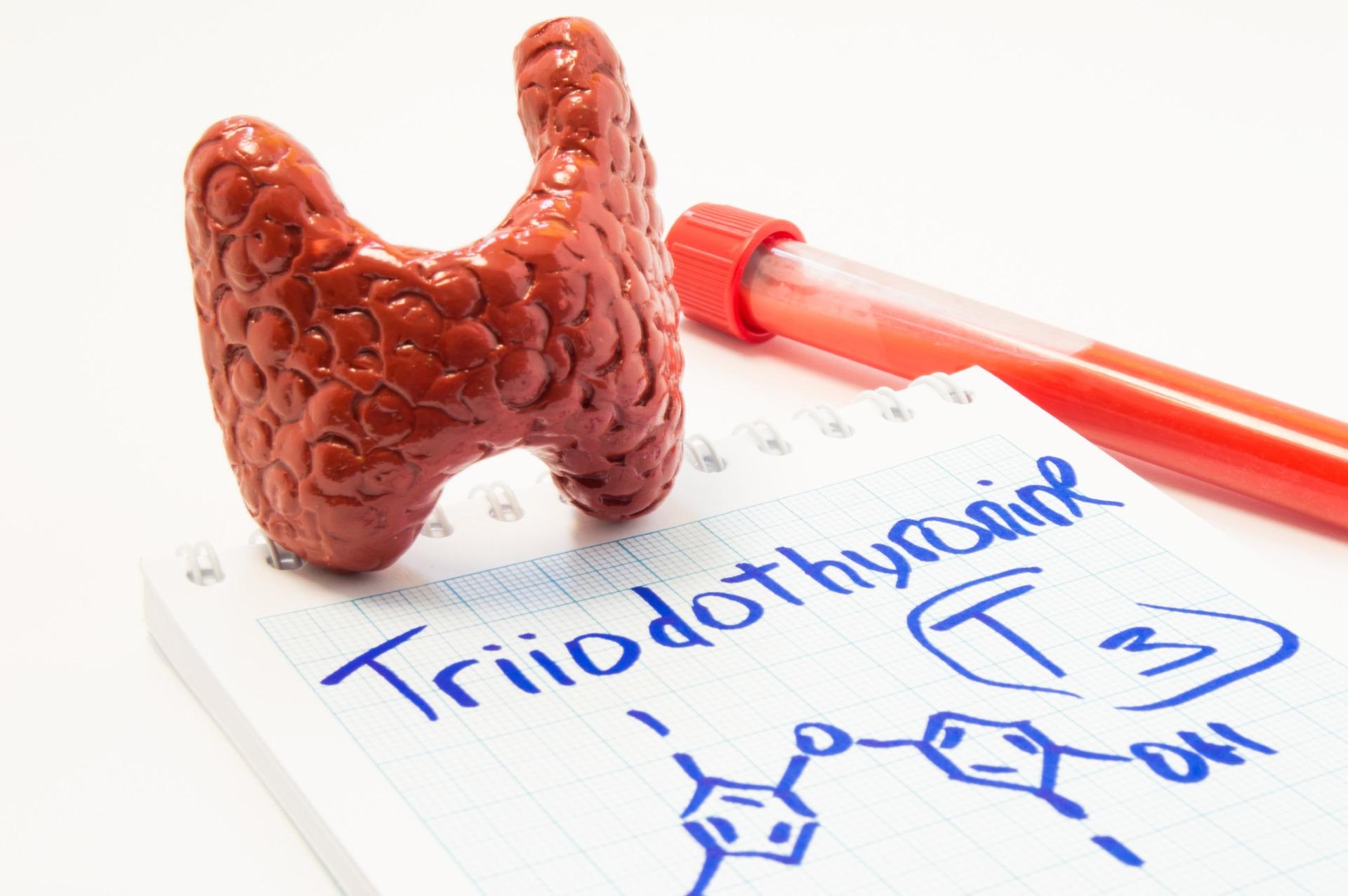 <p>Понижена функция на щитовидната жлеза</p>