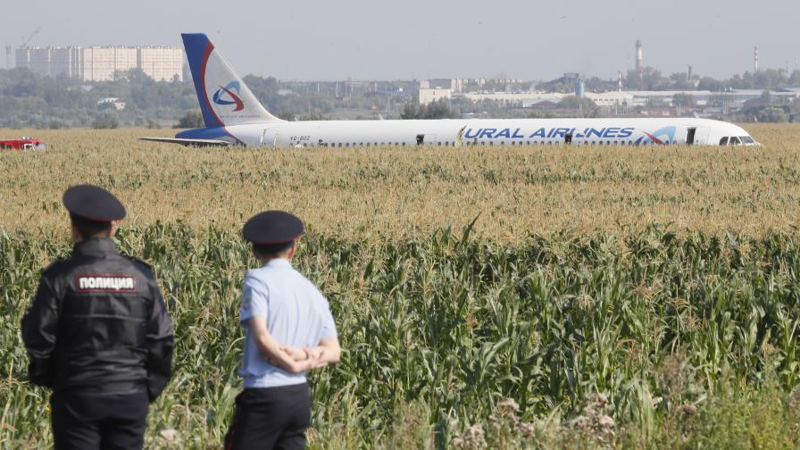 Самолет кацна аварийно в нива с царевица в...