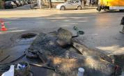 Невиждано: Огромно количество дунапрен в столична шахта