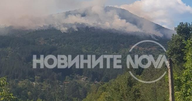 Снимка: Пожар край софийското село Реброво, изгоряха две вили