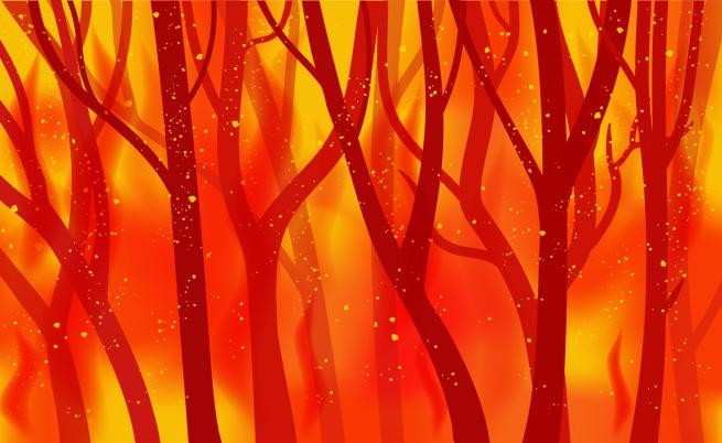 Голям пожар бушува край Котел