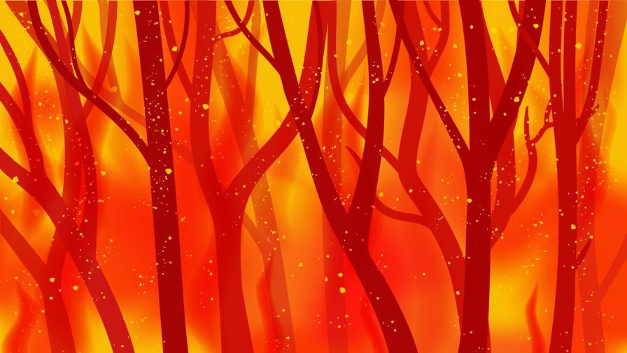 <p>Пожарът край Харманли е овладян</p>