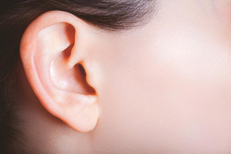 <p>Едно от най-големите приложения на билката лопен е при болка в ушите.</p>