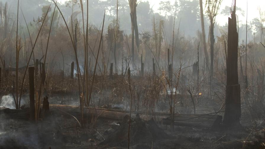 <p>Нови пожари избухнаха в Амазония</p>
