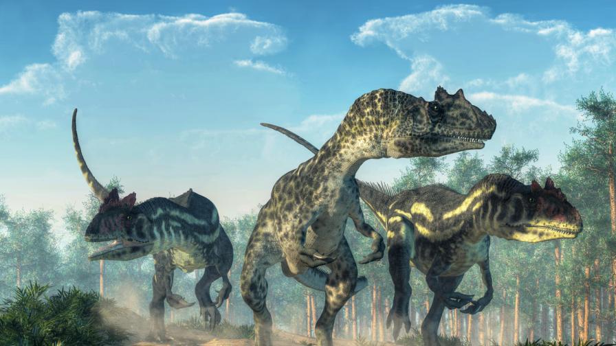 <p><strong>Учени:</strong> Ето какъв е бил денят след изчезването на динозаврите</p>