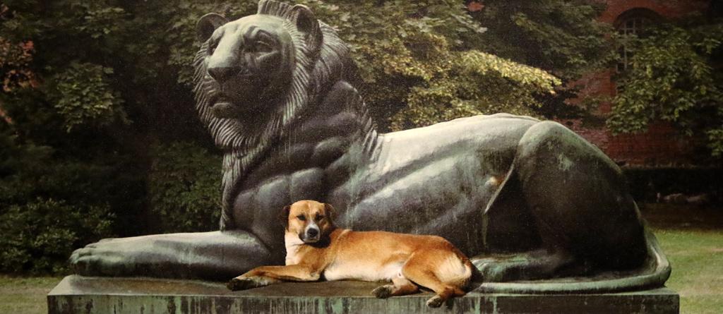 <p>Надежда Олег Ляхова - Софийски лъвове, 2004</p>