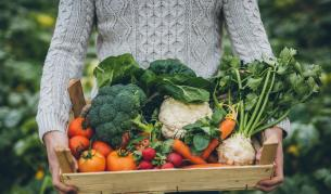 <p><strong>Райската градина&nbsp;е зеленчукова.</strong>&nbsp;И ще я намерите в квартал &quot;Надежда&quot;</p>
