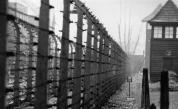 Собибор – лагерът за смърт и еврейското въстание