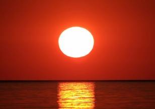Вероятно 2020 г. е била най-топлата досега