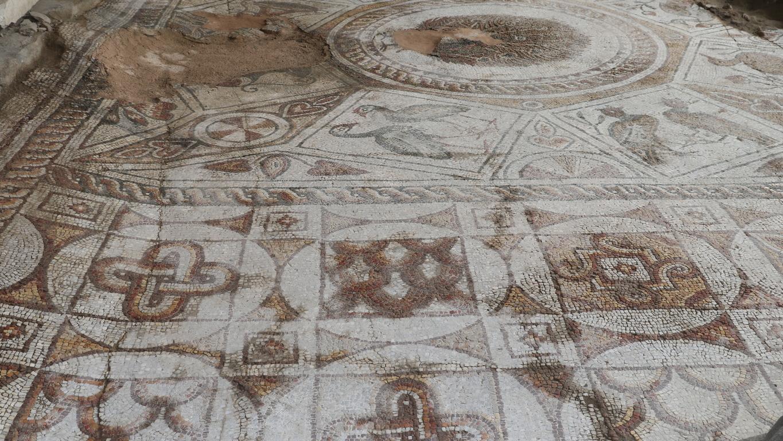 <p>С помощта на екскурзоводи и очила за виртуална реалност гостите се пренесоха 17 века назад във времето, когато на това място са били положени красивите мозайки, изобразяващи великолепни птици.</p>