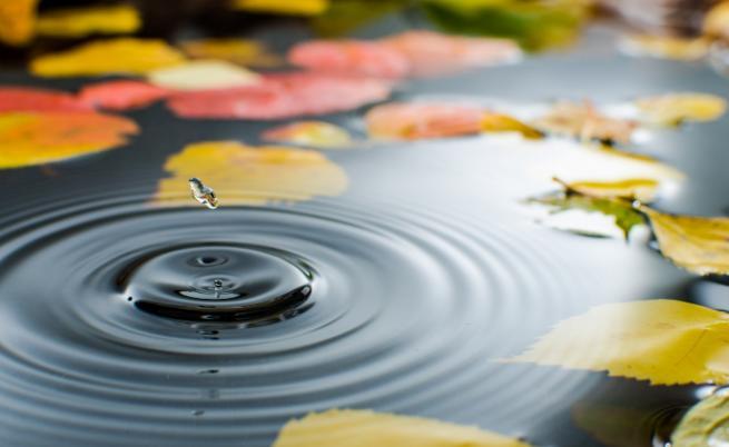Днес дъжд, какво време ни очаква през ноември