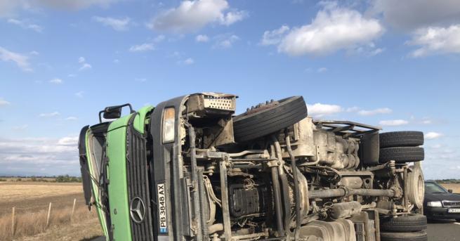 България Камион с прасета се обърна на