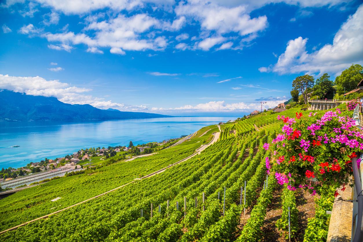 <p><strong>Женевско езеро</strong></p>  <p>Това е второто по големина сладководно езеро в Централна Европа, намиращо се между Франция и Швейцария.</p>