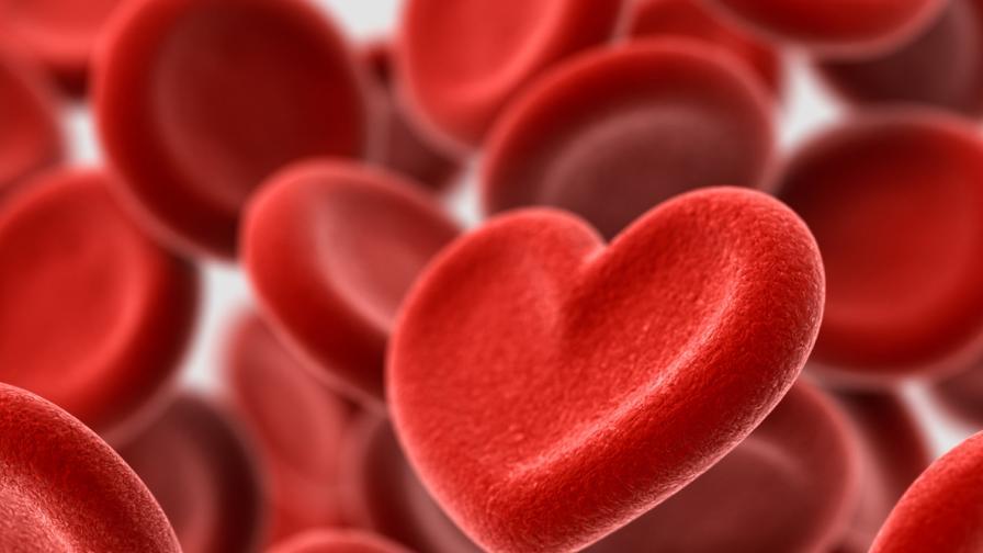 <p><strong>3 причини,</strong> поради които трябва да знаете коя <strong>кръвна група</strong> сте</p>