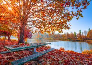 С какво време посрещаме първата есенна седмица