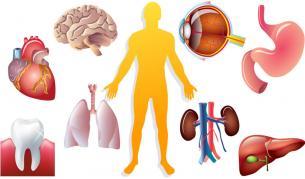 Докторите: Как да се опазим от болестите