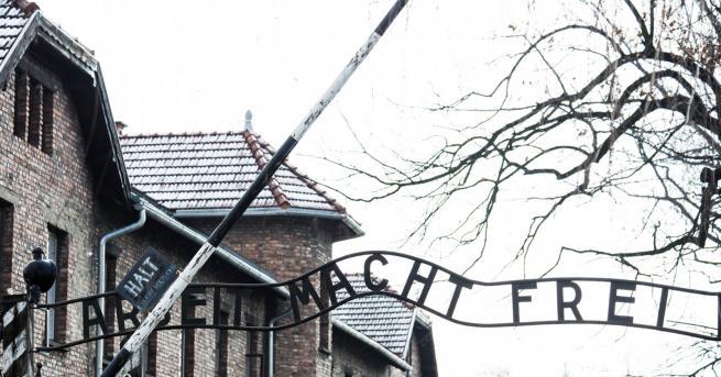 Вдъхновени истории Любовниците от Аушвиц: историята, която трогна света Те