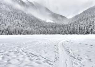 Опасни снеговалежи в САЩ