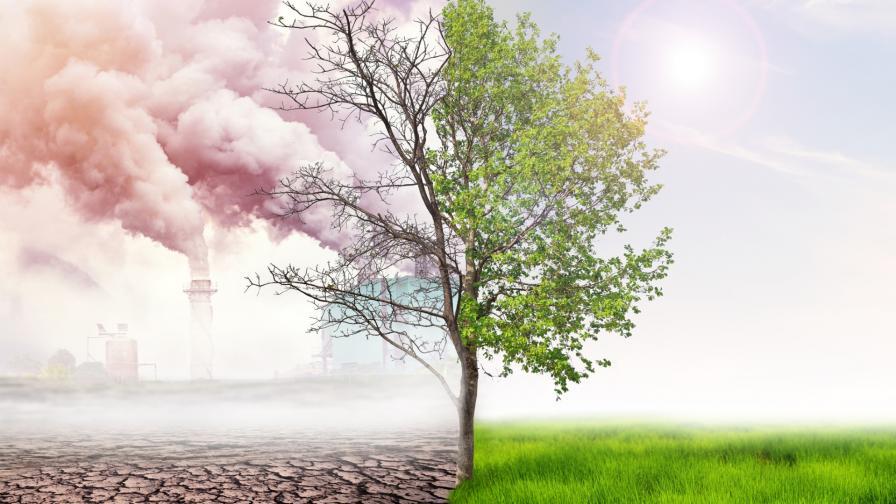 """""""Климатична истерия"""" е анти-дума на годината"""