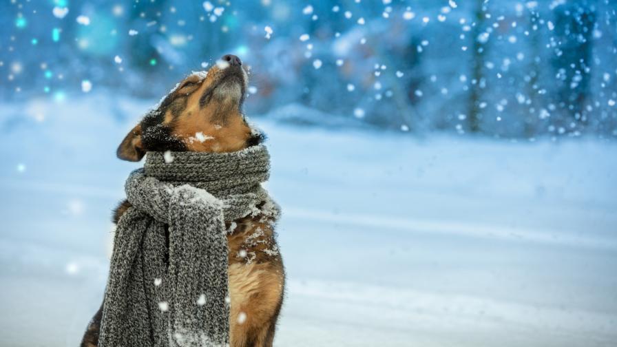 <p>Очаква ни рязка промяна на времето и сняг</p>
