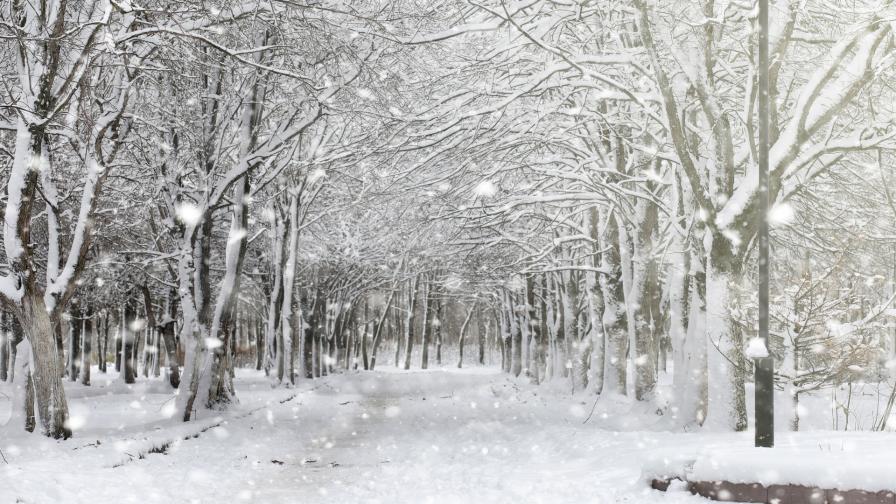 <p>Предупреждения за опасно време в Западна България</p>