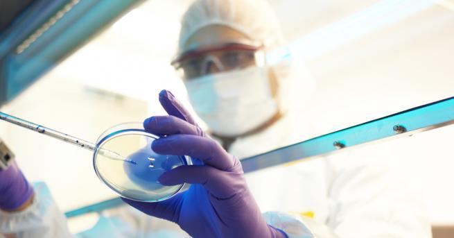 Свят Мистериозен вирус нападна Азия, учените не знаят какво е