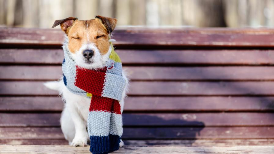 Затопляне днес, какво ще е времето през уикенда