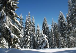 Денят не е подходящ за туризъм в планините