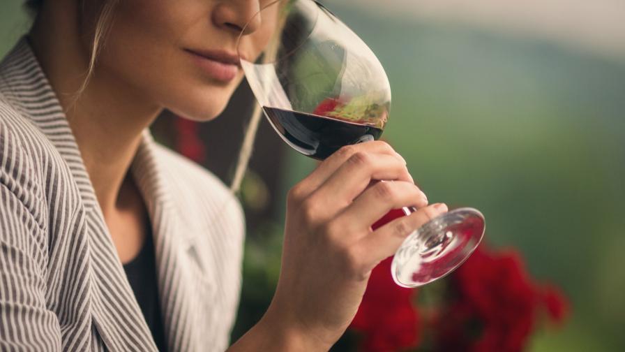 Вижте как климатичните промени застрашават производството на вино
