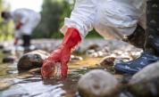 Наднормени концентрации на цианиди в реките Юговска и Чепеларска