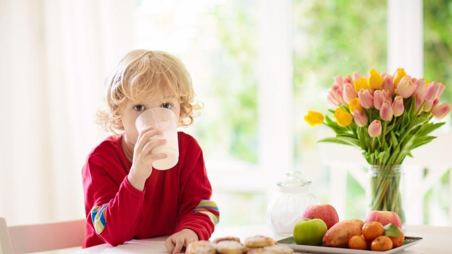 Как да осигуряваме здравословна и питателна храна на 4-годишното дете