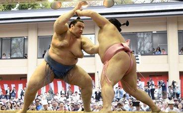 Шеста победа за Аоияма на турнира по сумо в Токио