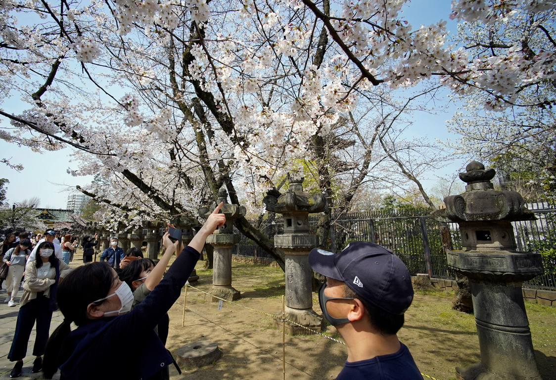 <p>Паркът Уено, Токио</p>