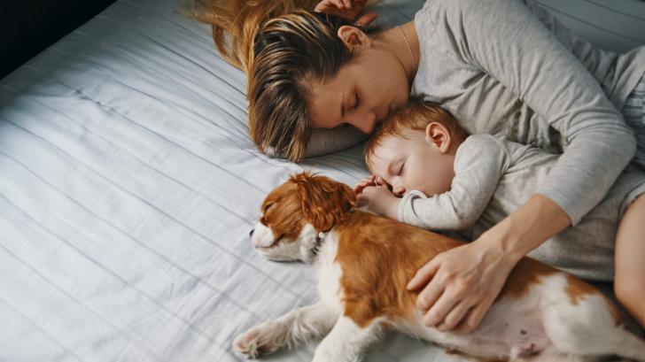Детето става от леглото през нощта. Как да се справим?