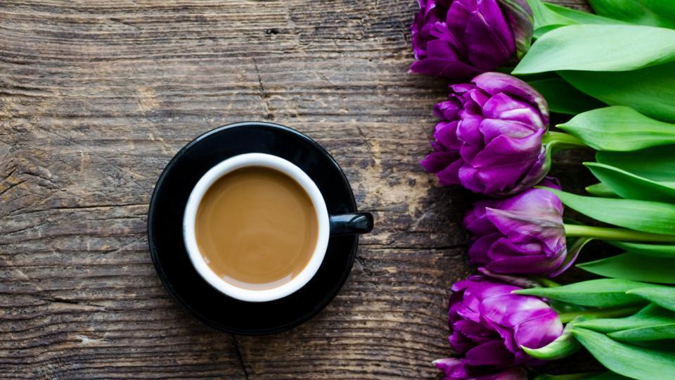 пролет кафе лале лалета цветя сутрин хороскоп