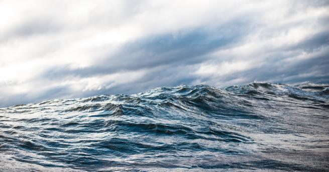 Любопитно До 2050 г. океаните могат напълно да се възстановят