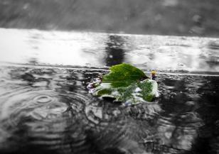 Интензивни валежи в петък