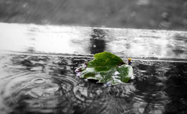 Дъжд, гръмотевици и вятър, май започва с ниски температури