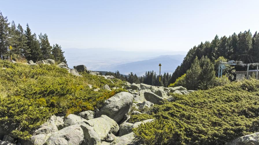 """Отварят за разходки природен парк """"Витоша"""""""