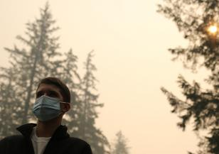 Мръсният въздух се отразява върху интелекта