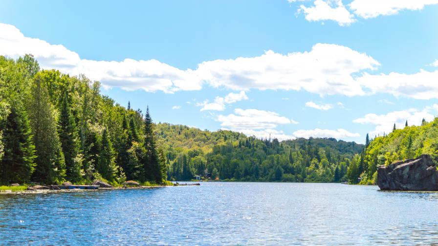 Тяло на жена бе открито в Панчаревското езеро