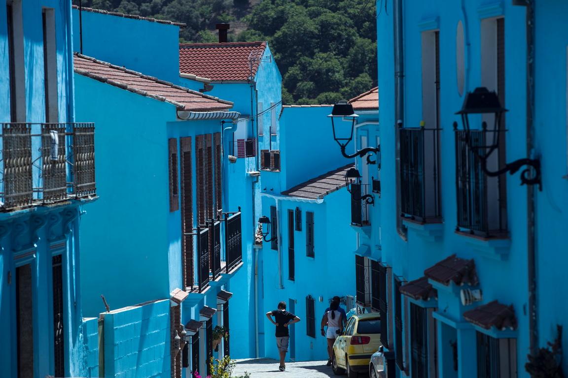 <p>Синият цвят е студен според художниците, но пък връзката, която правим, когато го погледнем, не е за нещо студено и неприятно. Използват се бои, които са оттенъци на синьото: ултрамарин, азурит, кобалтово синьо, турско синьо, синьо-зелено (циан).</p>