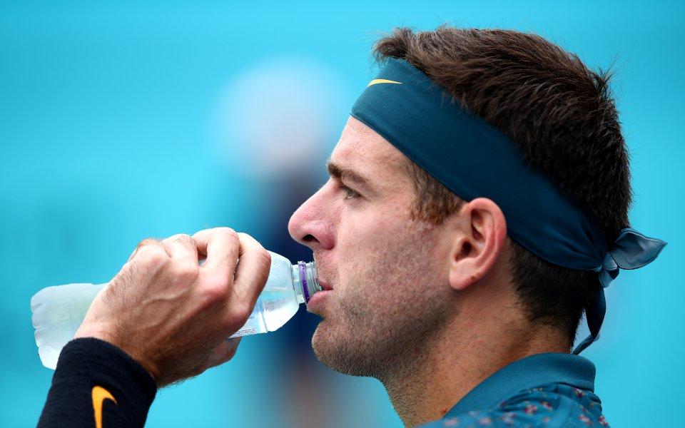 Шампионът от US Open 2009 Хуан Мартин дел Потро отново