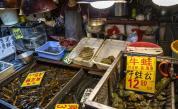 Пазарът в Ухан, от който се твърдеше, че е тръгнал коронавируса