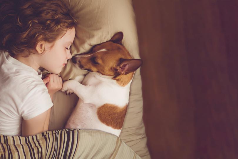 4 съвета за връзката между детето и кучето